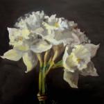 1185 - White Narcissi