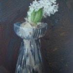 Hyacinth Bulb 2
