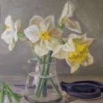 Cut daffodils
