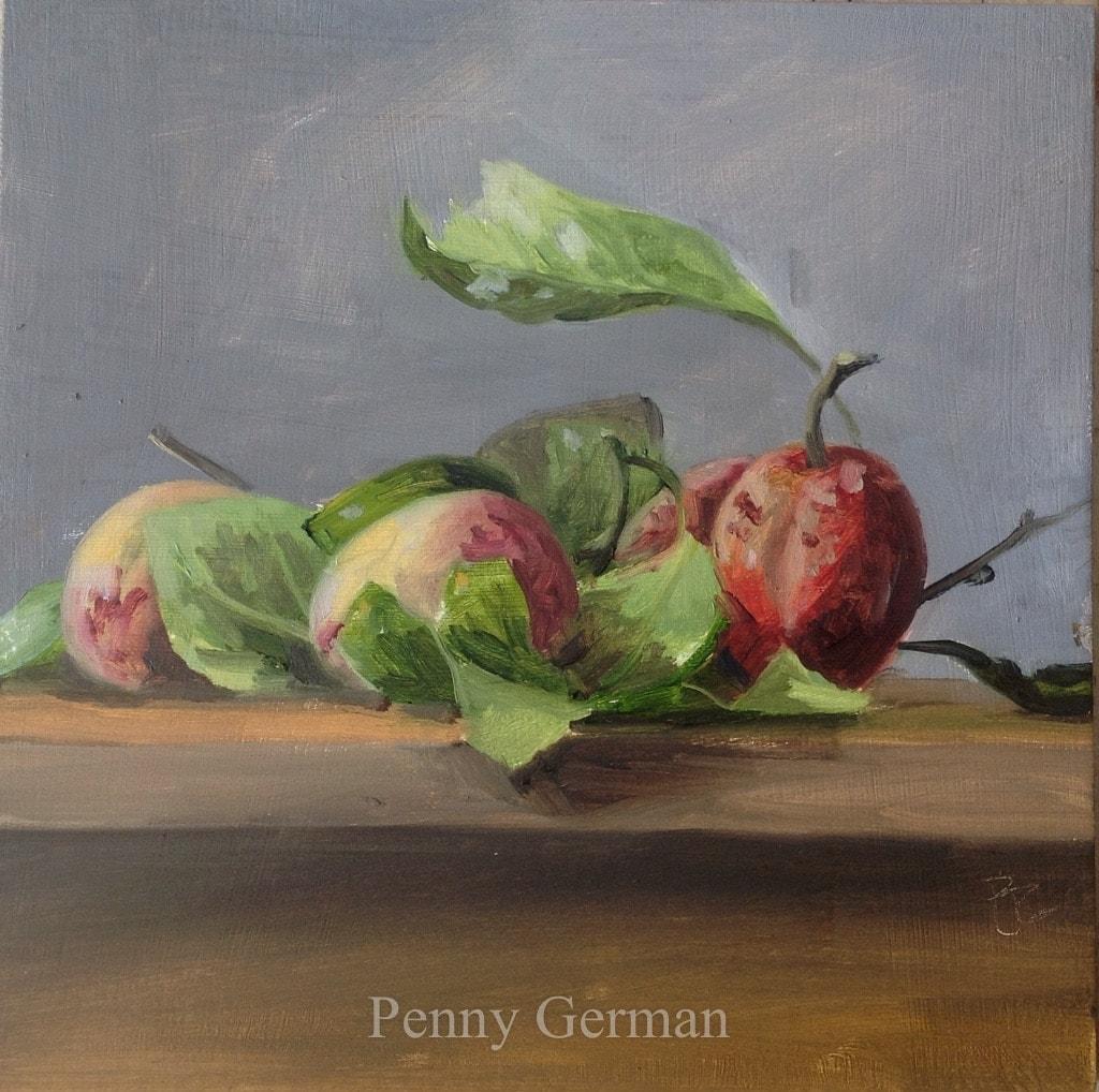 1753 plums on a shelf