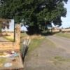 painting en plein-air